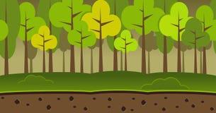 Forest landscape seamless background. Dark forest background. Trees seamless pattern. Forest illustration Stock Photography