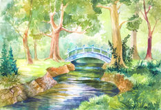 Forest landscape in watercolor. A bridge across the river. Walk. On the nature. Sunny day. Picture, sketch, illustration for background, wallpaper, paper or stock illustration
