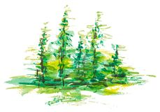 Forest landscape. Watercolor group of fir trees green forest landscape, Drawing on white isolated background Stock Photos