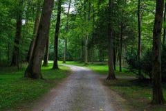 Old park Schoenbusch  Schönbuch  , Aschaffenburg, Germany. Forest landscape: winding road in an old park among deciduous trees.  Park Schoenbusch  Schö Royalty Free Stock Photo