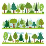 Forest landscapes. Woodland nature trees panorama, forests environment and pine tree vector illustration