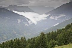 The forest of Le Praz Royalty Free Stock Photos