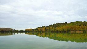 Forest line reflecting in the lake water, autumnal landscape. France stock footage