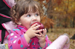 In the forest a little girl eats red apple Stock Photos