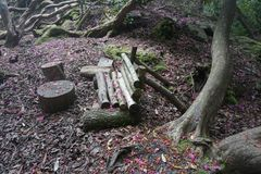 Forest Log Bench Royalty Free Stock Photos