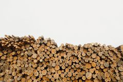 Pile of wood logs .Forest logging site. felled tree trunks. stock photo