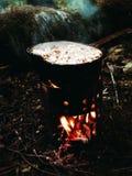 Forest Lunch, el acampar, al aire libre, alza Fotografía de archivo libre de regalías