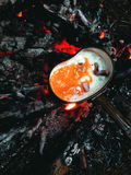 Forest Lunch, Omelette, Camping, Outdoor. Forest Spruce Tea, Pine Tea, Camping, Outdoor fire bonfire Tea Adventure Hike Hiking Outdorlife Wild Wildfood Lunch stock photography