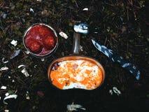Forest Lunch, tortilla, el acampar, al aire libre Imágenes de archivo libres de regalías