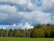 Forest meadow with cloudy sky Stock Photo