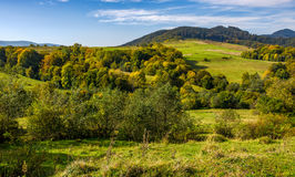 Forest and meadow on hills in mountainous countryside. Forest and meadow with colorful foliage on hills in mountainous countryside. lovely early autumn mountain stock image
