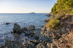 The forest meets the sea in Chalkidiki, Greece Royalty Free Stock Images