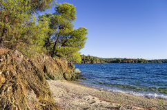 The forest meets the sea in Chalkidiki, Greece Royalty Free Stock Photo