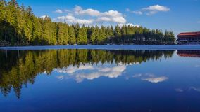 Forest mirror in lake blue sky with clouds royalty free stock photo