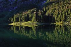 Forest mirroring in lake Seealpsee Stock Images