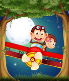 A forest with monkeys riding on a plane Royalty Free Stock Photography