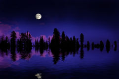 Forest Moonrise stock image