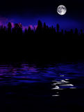 Forest Moonrise Reflection Royalty Free Stock Images