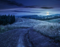 Forest on a mountain hillside in rural area at night. Forest in mountain rural area. green agricultural field on a hillside. beautiful summer scenery at night in stock photos