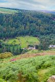 Forest and mountain landscape. Glendalough valley in County Wicklow, Ireland. Royalty Free Stock Photo