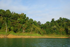 Forest and mountain. This mountain is in a large green lake.This place is in south of thailand Stock Photography