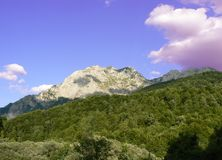 Forest and mountain peak. Mountain peak above dense forest in Bosnia Royalty Free Stock Photos