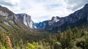 Forest and mountain range Royalty Free Stock Image