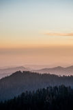 Forest Mountain Ranges hermoso foto de archivo libre de regalías