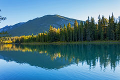 Forest and mountain reflection Stock Photo