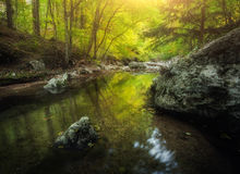 Forest and mountain river at sunset. Colorful landscape Stock Photography