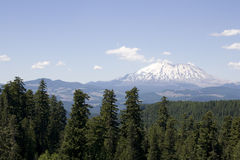 Forest mountain St. Helens volcano Royalty Free Stock Photography