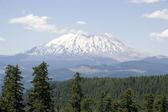 Forest mountain St. Helens volcano Stock Image