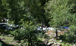 Forest and mountain stream. Photo taken on: July 27 Saturday, 2013 Royalty Free Stock Image