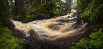 Forest mountain stream after rainy days, summer in Norway. Jonsvatnet area near Trondheim stock photo