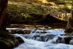 Forest mountain waterfall natural in Thailand. Nature concept Royalty Free Stock Photography