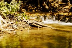Forest mountain waterfall natural in Thailand. Nature concept Stock Photo