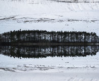 Forest and mountain Winter landscape reflected in calm lake Royalty Free Stock Image