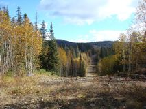 Autumn and mountains. stock photos