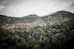 Forest, mountains and clouds. Landscape. Andorra. Toned Stock Photography