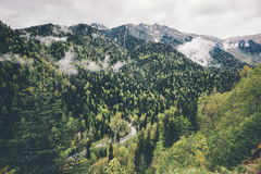 Forest Mountains and clouds Landscape Travel aerial view Stock Image