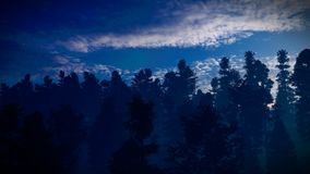 Forest in the mountains at dusk 3d rendering royalty free stock image