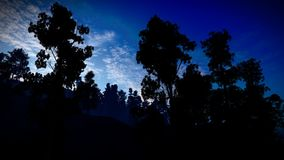 Forest in the mountains at dusk 3d rendering stock photos