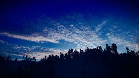 Forest in the mountains at dusk 3d rendering royalty free stock images