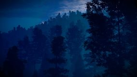 Forest in the mountains at dusk 3d rendering royalty free stock photography