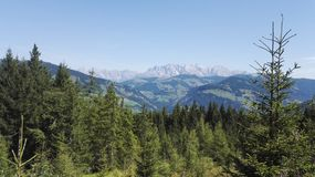 Forest and Mountains Royalty Free Stock Images