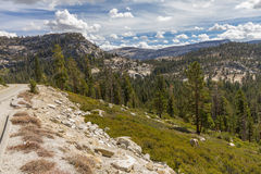Forest and mountains landscape of Yosemite National Park, USA Stock Photos