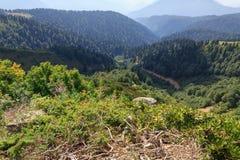 Forest and mountains. Rose Hutor.Krasnodarsky Peak Region, Russia.rn 2015.Latitude 43 ° 38`6 `N 43.634988rnLongitude 40 ° 16`20 `E 40.272229 Stock Images