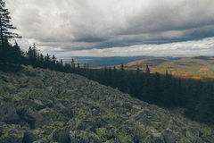 Forest mountains. In Russia, Taganai stock photos
