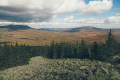 Forest mountains. In Russia, Taganai royalty free stock photo