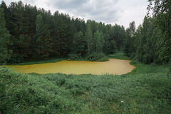 Forest mountains. In Russia, Taganai royalty free stock image